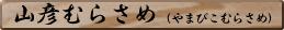 master_name21